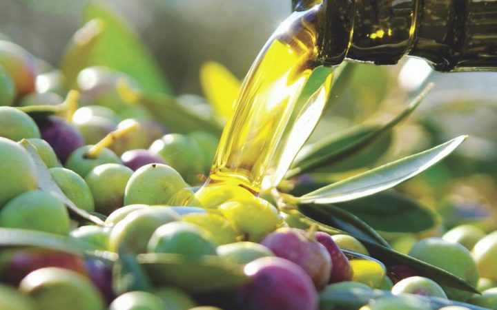 Tracing the Outstanding Olive to its Neolithic roots