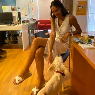 Pets at Work: Who let the dogs in!