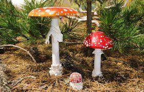 Make like a Mushroom!