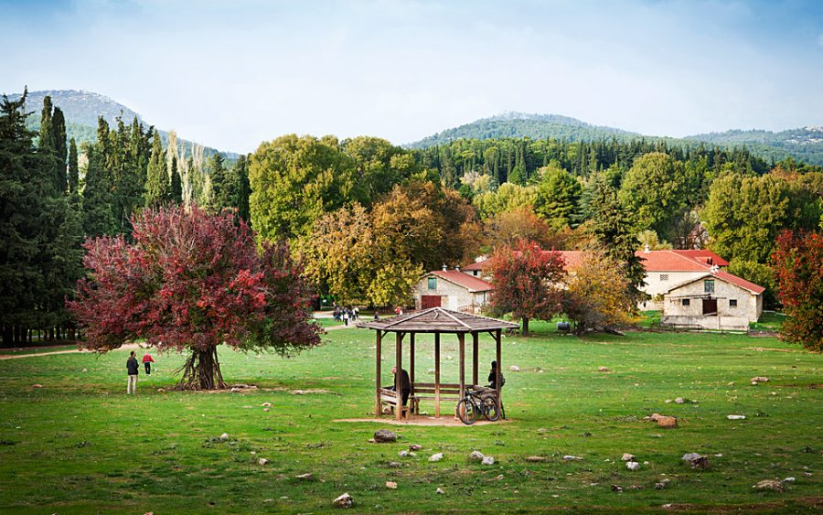 Former Royal Estate at Tatoi to be re-developed into a luxury hotel and spa destination